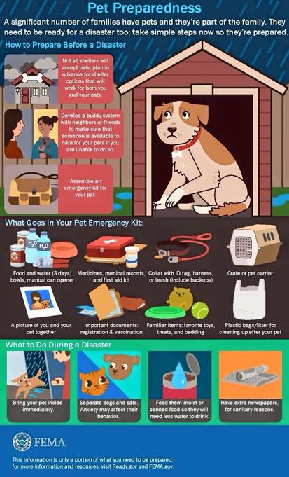 Graphic: Pet Preparedness